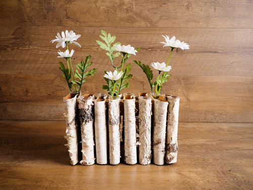 A series of folded, birch bark vases with daisies in them modeled as rustic spring decor.